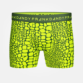 Crocodile Boxer - Green